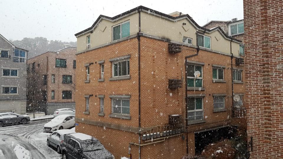눈이 왔다네