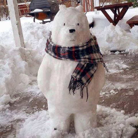 길가다 왠 백곰 한마리가...!!!