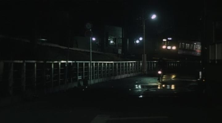 환상의 빛 幻の光, 1995