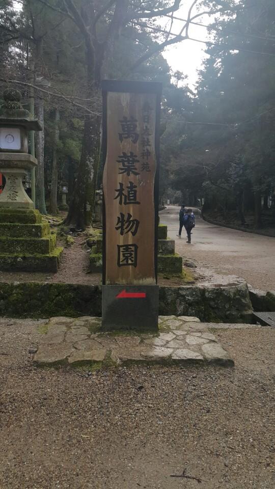 일본 간사이, 역덕 리벤지 (4) 나라 가스가타이샤..