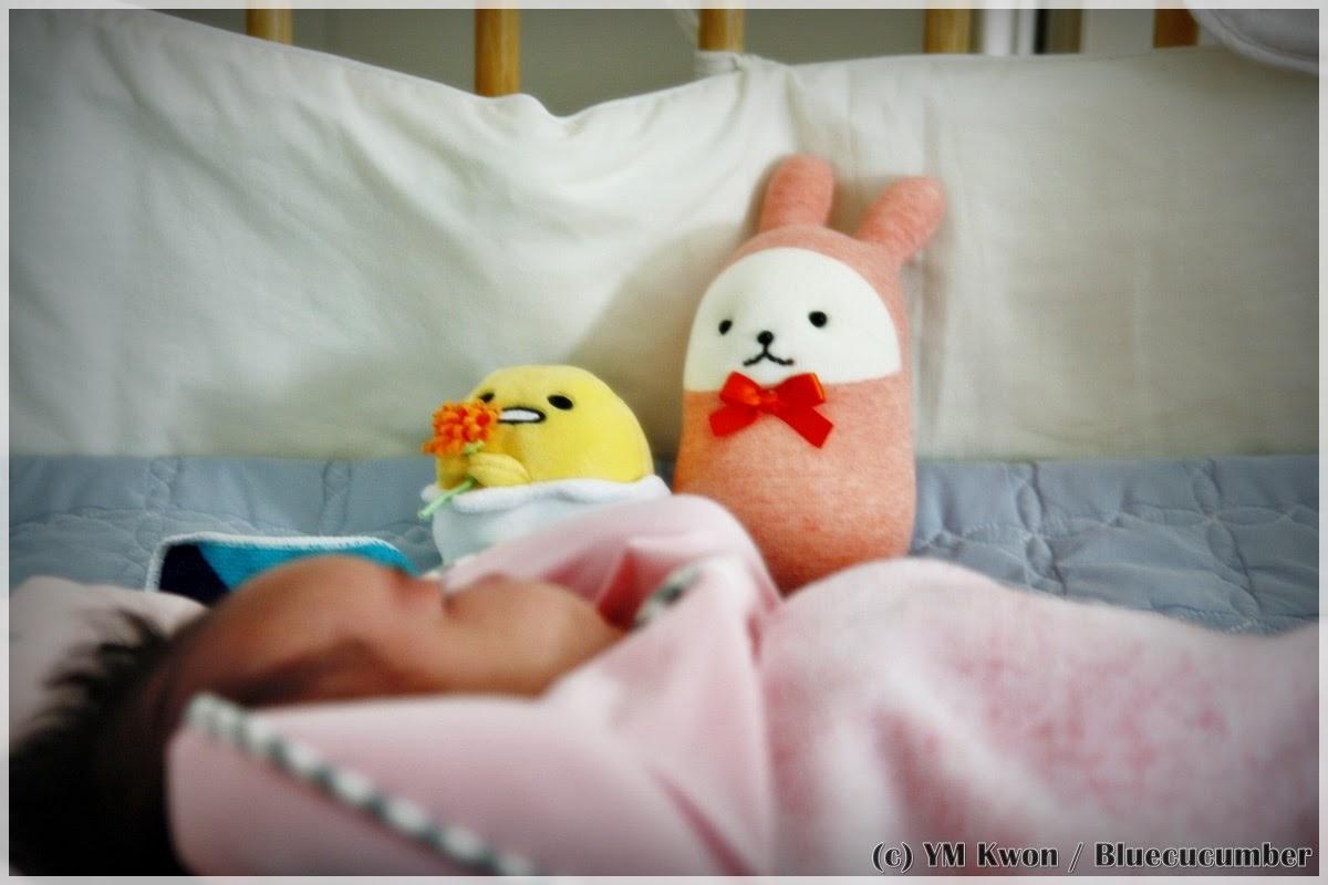 육아관찰기 (5) - 출생 신고로 시작하는 험난한 삶..