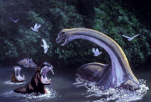 콩고에 살고 있는 모케레 무벤베 공룡