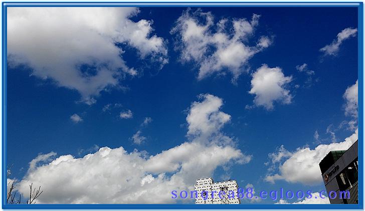춘천 전철여행-가을 하늘 예술인 날